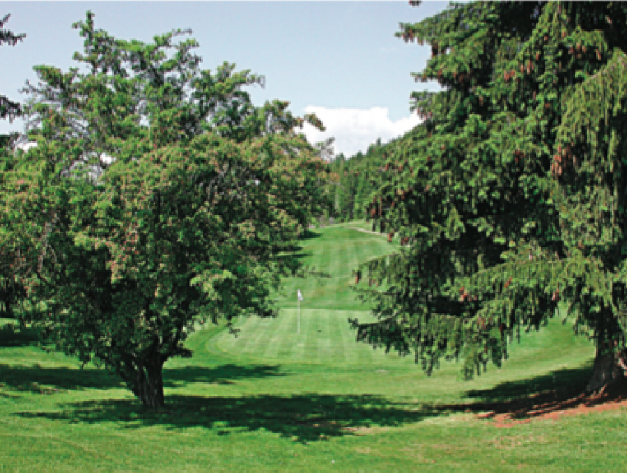 Anglemont Estates Golf Course