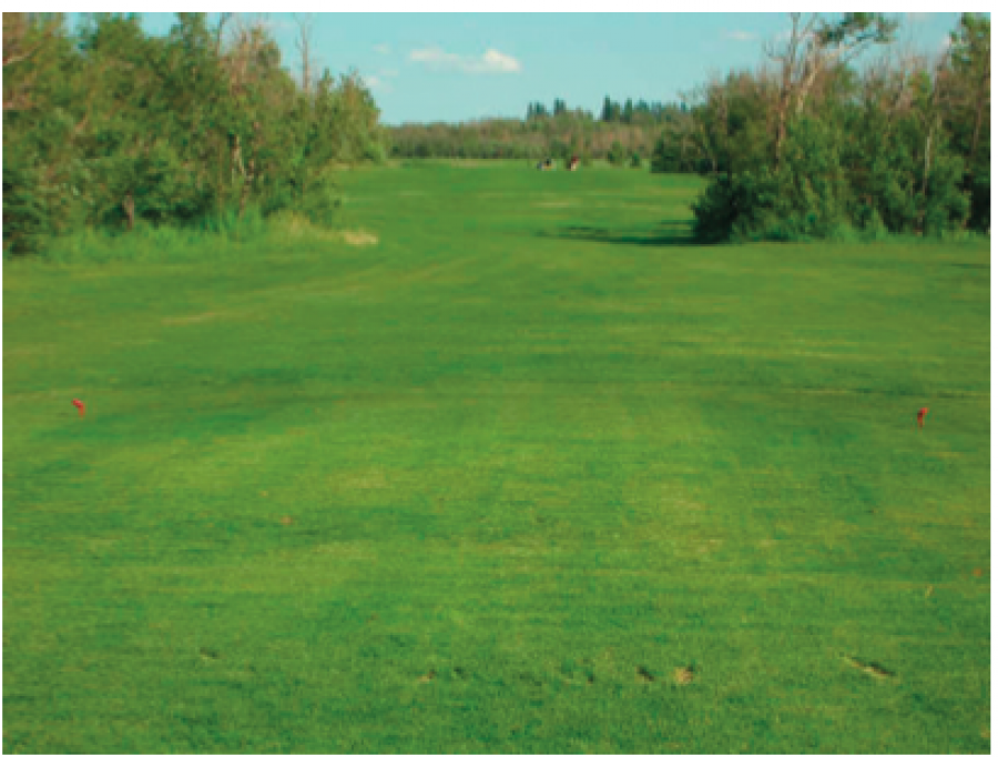 Tofield Golf Course