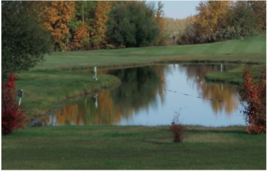 Bashaw Golf and Country Club