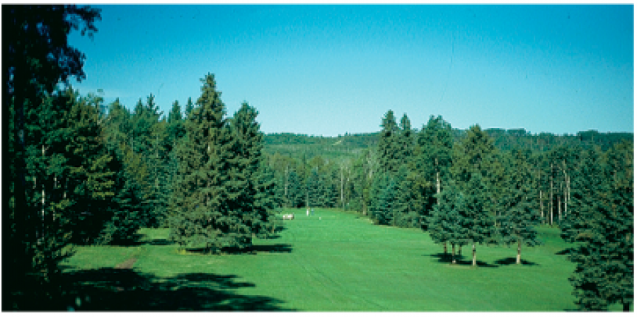 Spirit Creek Golf and Country Club