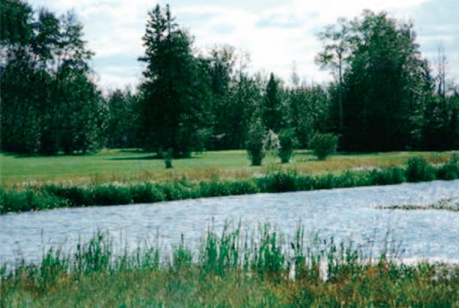 The Creek Golf Course and Campground