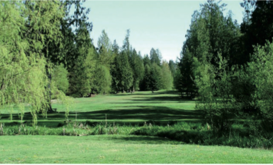 Tall Timbers Golf Course